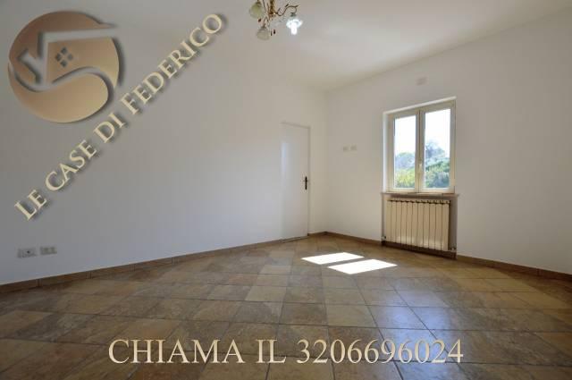 Appartamento in ottime condizioni in affitto Rif. 7060151