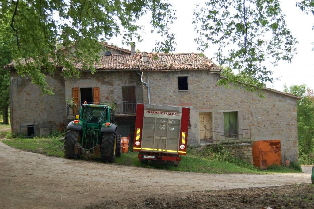 Attività / Licenza in vendita a Monterenzio, 6 locali, prezzo € 1.600.000   CambioCasa.it