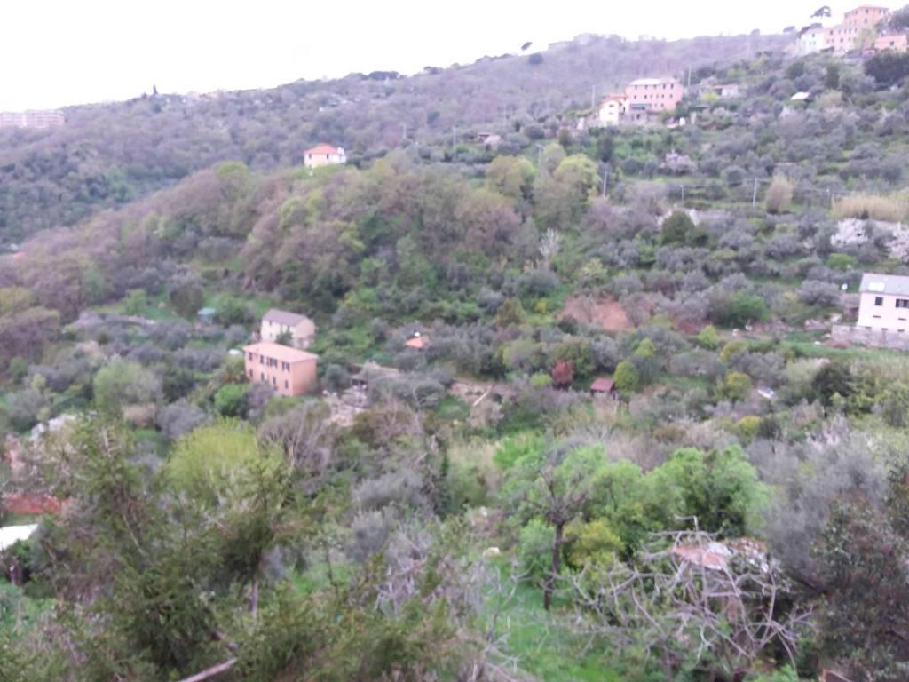 Foto 1 di Trilocale via degli Oleandri, Genova (zona S.Fruttuoso-Borgoratti-S.Martino)