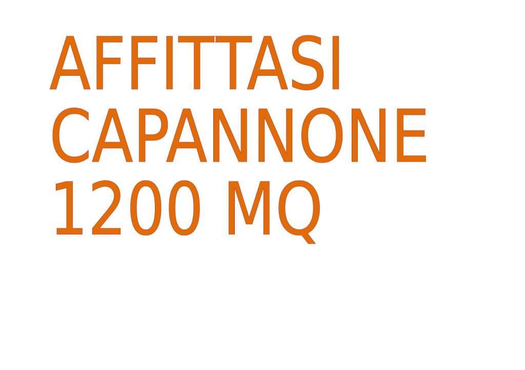 Capannone in affitto a Alessandria, 5 locali, Trattative riservate | PortaleAgenzieImmobiliari.it