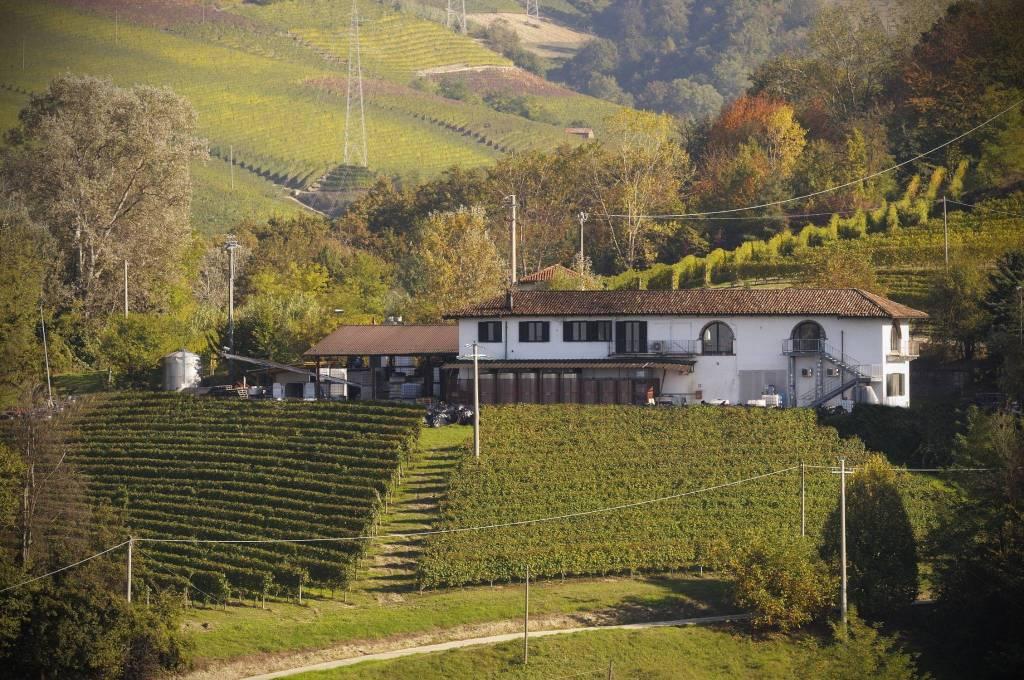 Rustico / Casale in vendita a Neive, 7 locali, Trattative riservate | PortaleAgenzieImmobiliari.it