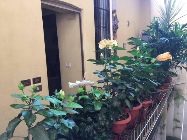 Appartamento in Vendita a Piacenza Centro:  2 locali, 40 mq  - Foto 1