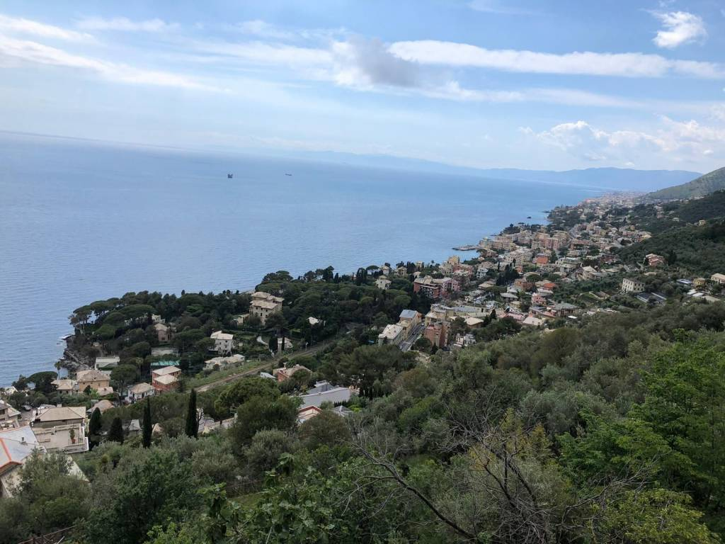 Foto 1 di Casa indipendente via Consiglieri, Pieve Ligure