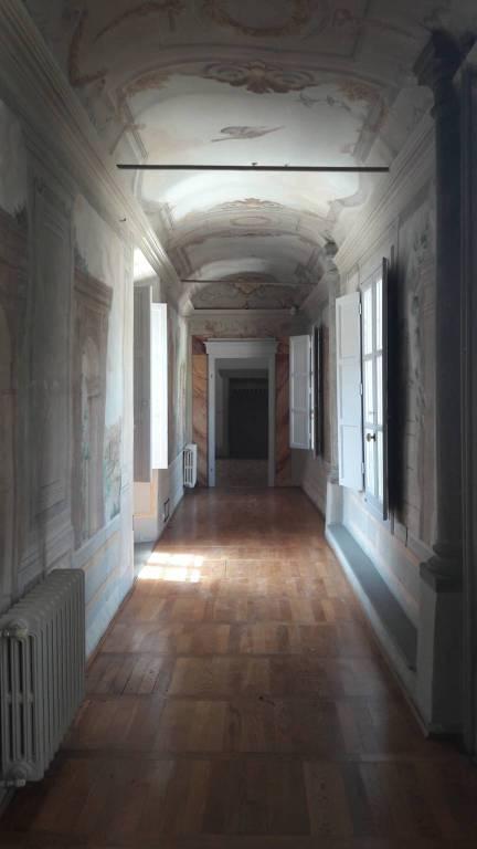 Foto 1 di Appartamento via San Gervasio, Firenze (zona Campo di Marte)