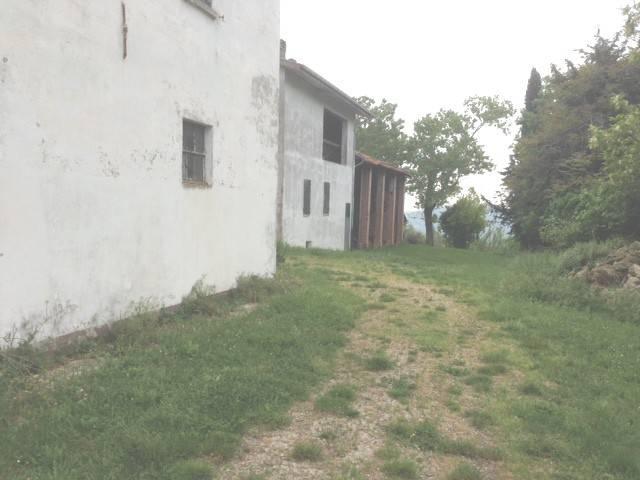 Rustico in Vendita a Castrocaro Terme E Terra Del Sole Periferia: 5 locali, 2813 mq