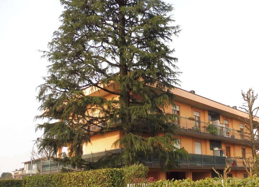 Appartamento in buone condizioni arredato in vendita Rif. 7875417