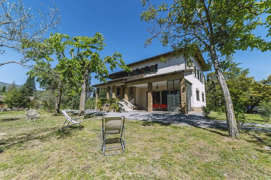 Villa in Affitto a Cetona Centro: 5 locali, 800 mq