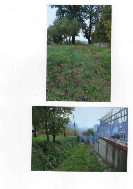 Terreno Agricolo in vendita a Lauria, 9999 locali, prezzo € 29.000 | PortaleAgenzieImmobiliari.it