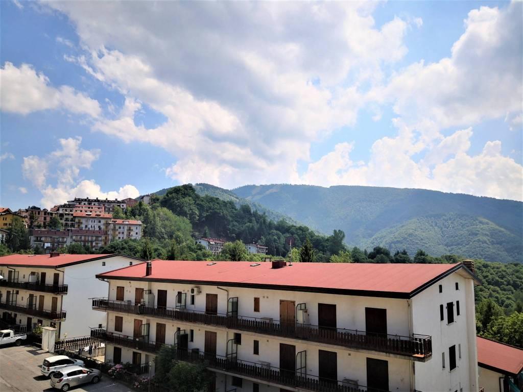 Appartamento in vendita a Roburent, 2 locali, prezzo € 40.000 | PortaleAgenzieImmobiliari.it
