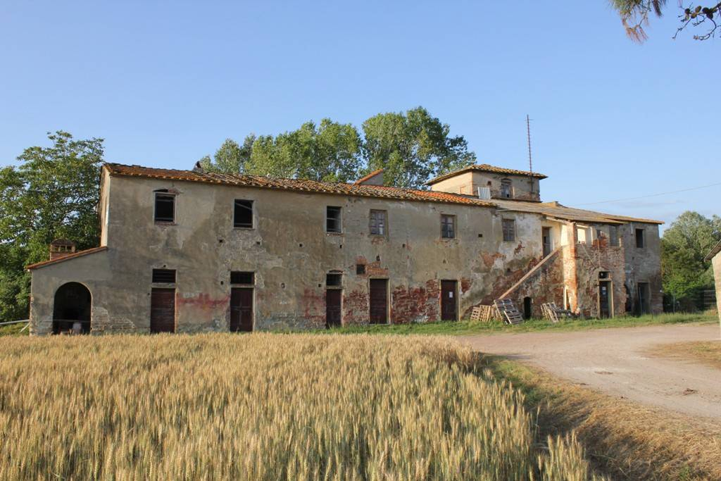 Rustico in Vendita a Capannoli Periferia: 5 locali, 3100 mq