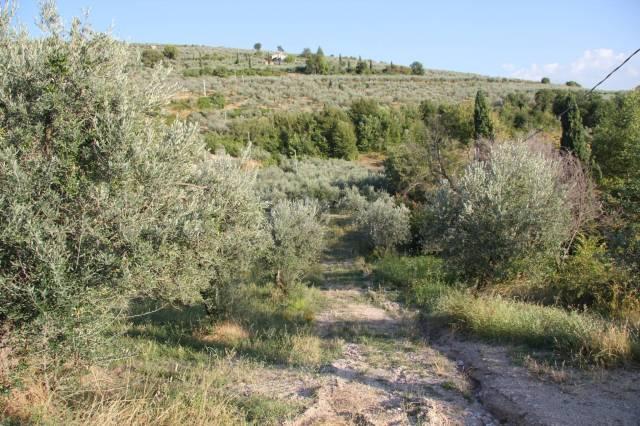 Terreno Edificabile Residenziale in vendita a Foligno, 9999 locali, prezzo € 55.000 | Cambio Casa.it