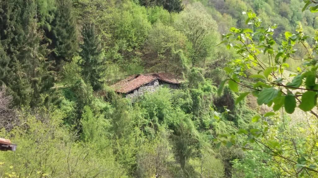 Rustico / Casale in vendita a Pertica Bassa, 4 locali, prezzo € 17.000 | PortaleAgenzieImmobiliari.it