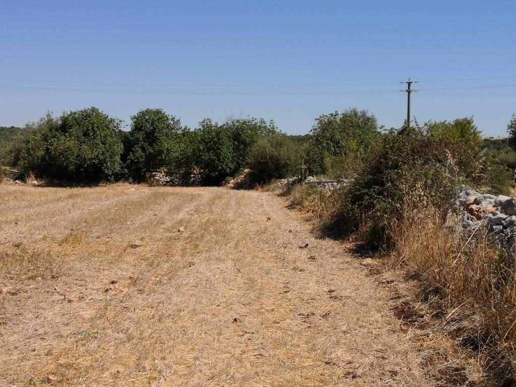 Terreno commerciale in Vendita a Scicli Periferia: 16000 mq