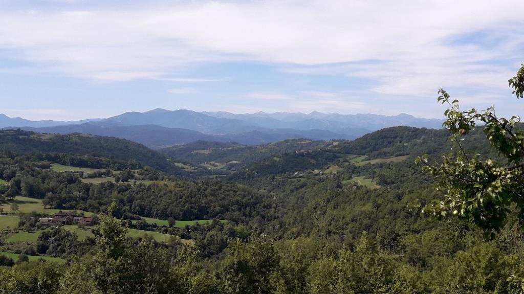 Terreno Agricolo in vendita a Alba, 9999 locali, Trattative riservate   PortaleAgenzieImmobiliari.it