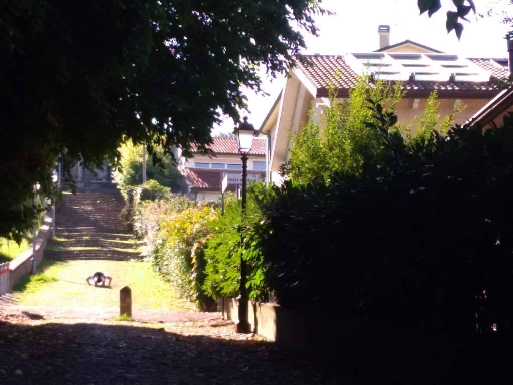 Villa in Vendita a Cesena Centro: 5 locali, 268 mq