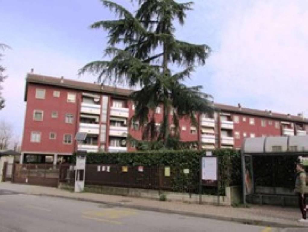 Appartamento in Affitto a Rodano: 3 locali, 70 mq