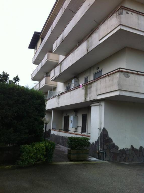 Appartamento in buone condizioni in affitto Rif. 8140961
