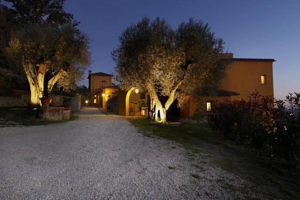 ingresso con olivi