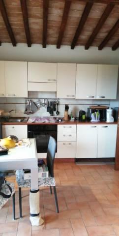 Appartamento bilocale in affitto a Siena (SI)