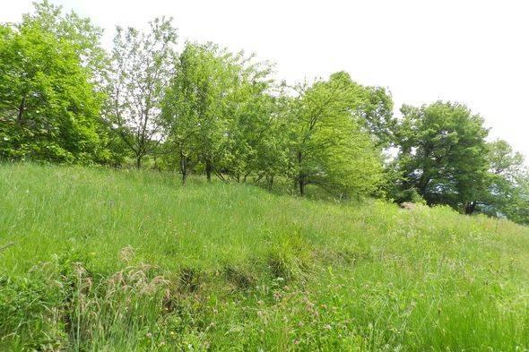 Terreno residenziale in Vendita a Magione: 775 mq