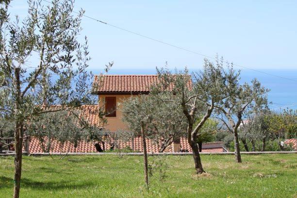 Terreno Agricolo in vendita a Maratea, 9999 locali, Trattative riservate | CambioCasa.it