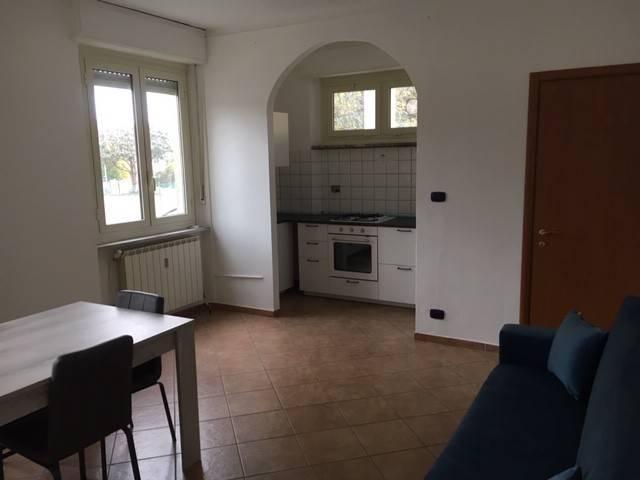 Appartamento in ottime condizioni in affitto Rif. 8997305