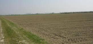 Terreno Agricolo in vendita a Priocca, 9999 locali, prezzo € 27.000 | PortaleAgenzieImmobiliari.it