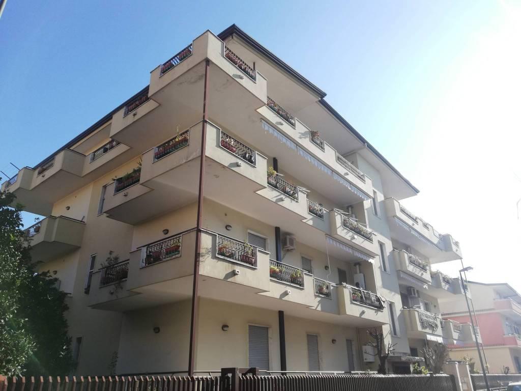 Appartamento in buone condizioni in affitto Rif. 8744856