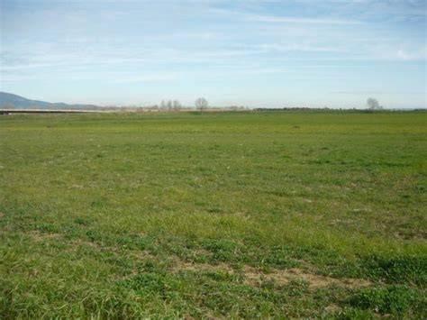 Terreno Agricolo in vendita a Agnadello, 9999 locali, Trattative riservate | CambioCasa.it