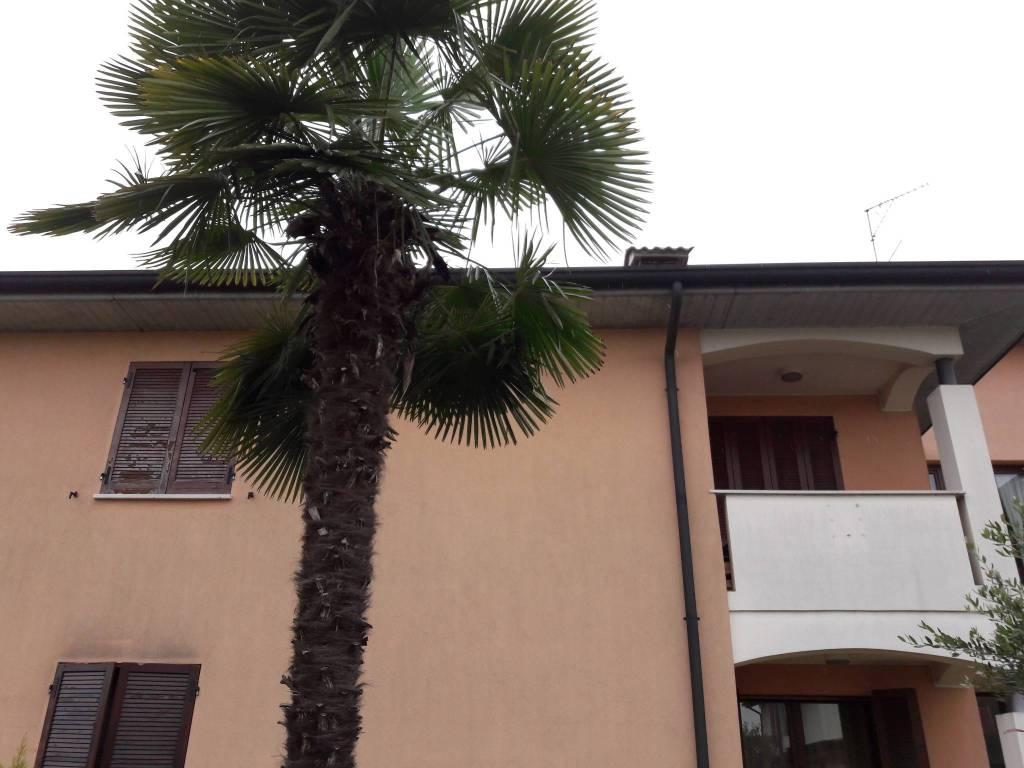 Appartamento in affitto a Rodigo, 2 locali, prezzo € 400 | CambioCasa.it