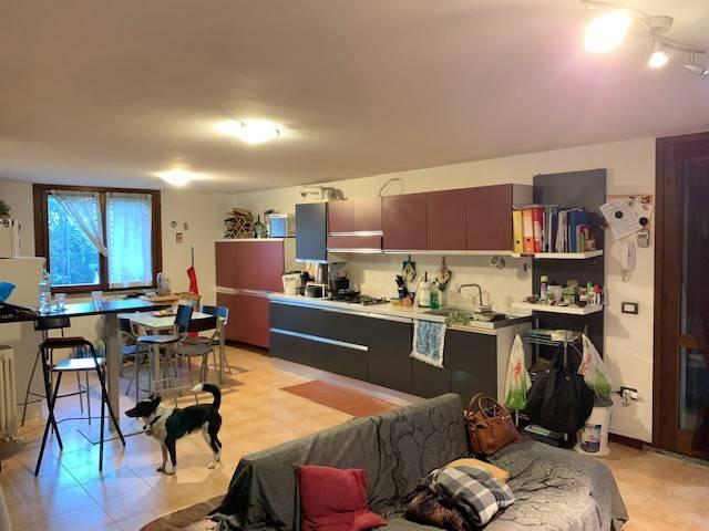 Appartamento in vendita a Torrile, 3 locali, prezzo € 129.000   PortaleAgenzieImmobiliari.it