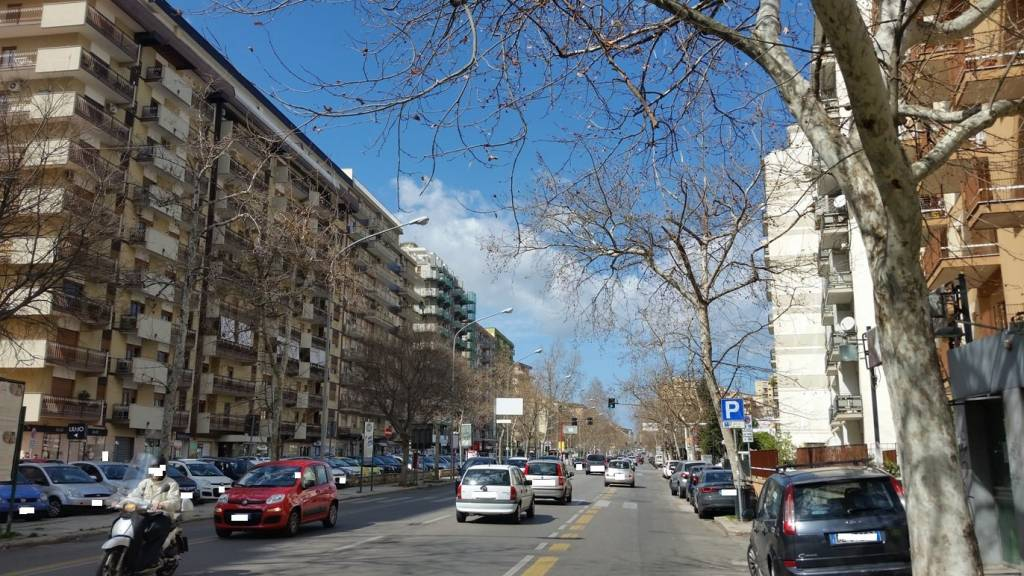 Appartamento in Affitto a Palermo Centro: 3 locali, 70 mq