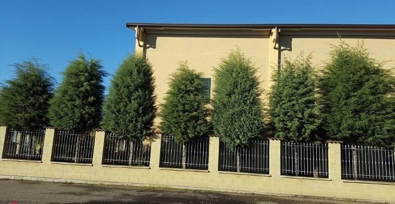 Capannone in vendita a Sant'Alessio con Vialone, 6 locali, prezzo € 800.000 | PortaleAgenzieImmobiliari.it