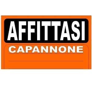 Capannone in affitto a Spinea, 9999 locali, prezzo € 3.000 | CambioCasa.it