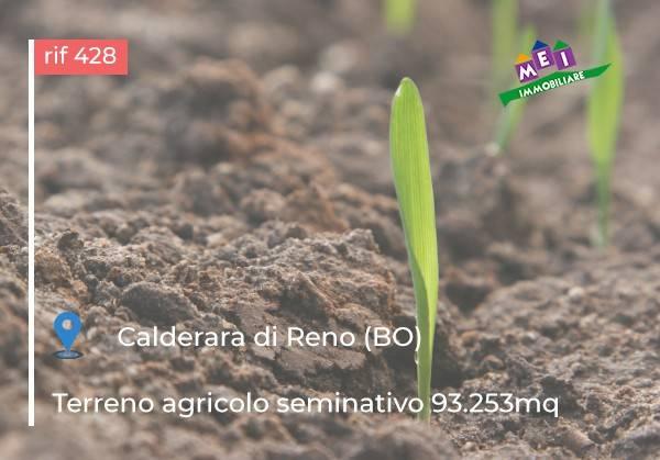 Terreno Agricolo in vendita a Calderara di Reno, 9999 locali, prezzo € 330.000   CambioCasa.it