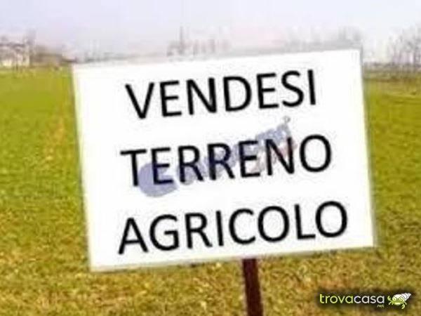 Terreno Agricolo in vendita a Grumello del Monte, 9999 locali, prezzo € 75.000 | PortaleAgenzieImmobiliari.it