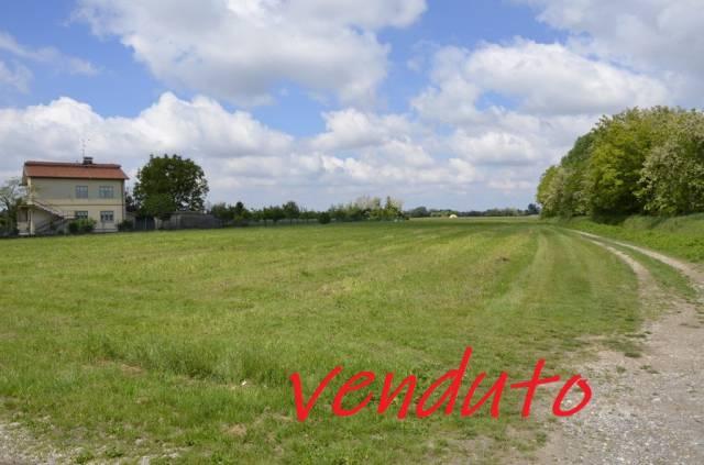 SAN CANZIAN D'ISONZO: terreno agricolo seminativo