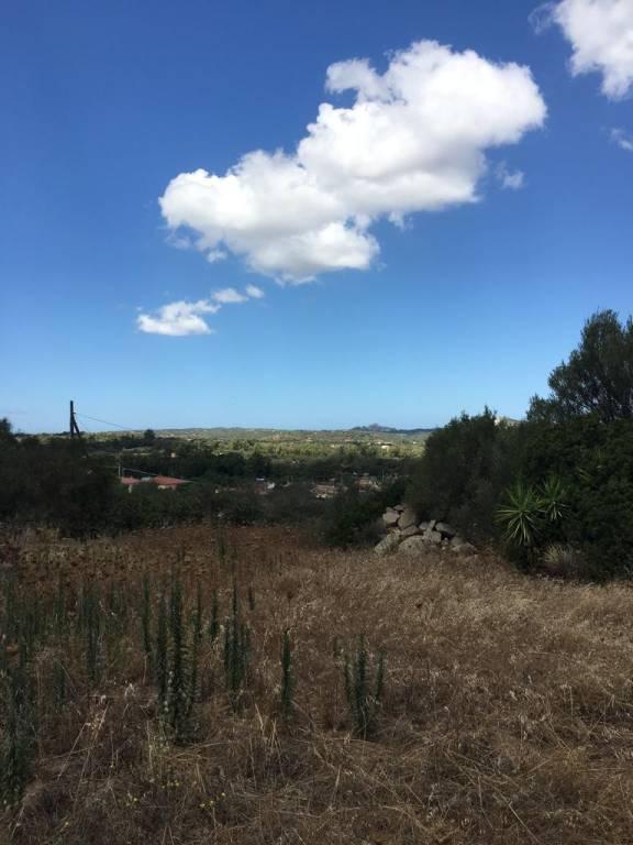 Terreno commerciale in Vendita a Arzachena: 5062 mq  - Foto 1