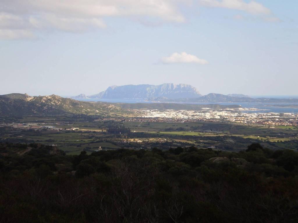 Terreno commerciale in Vendita a Olbia: 80000 mq