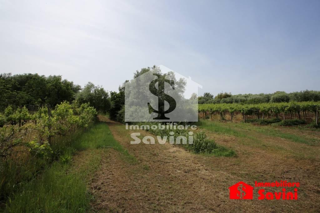 Terreno Agricolo in vendita a Genzano di Roma, 9999 locali, prezzo € 12.000 | CambioCasa.it