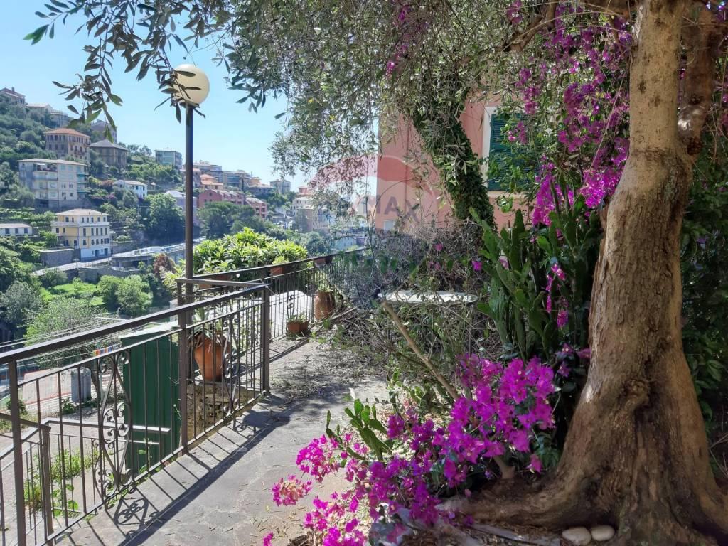 Appartamento in vendita a Zoagli, 7 locali, prezzo € 395.000   PortaleAgenzieImmobiliari.it
