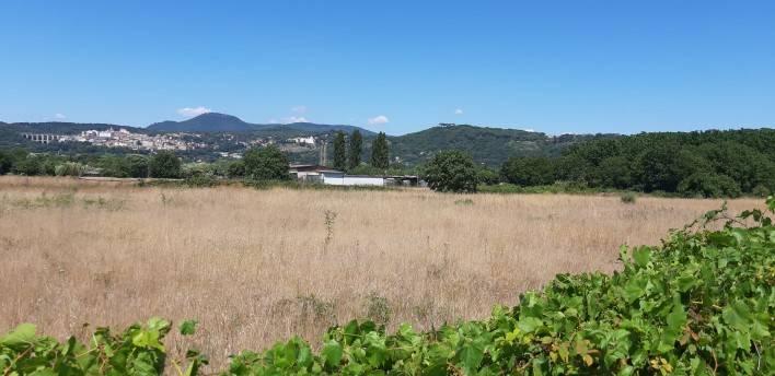 Terreno Agricolo in vendita a Ariccia, 9999 locali, prezzo € 55.000 | CambioCasa.it