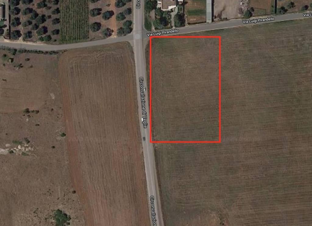 Terreno Agricolo in vendita a Veglie, 9999 locali, prezzo € 1.000 | CambioCasa.it
