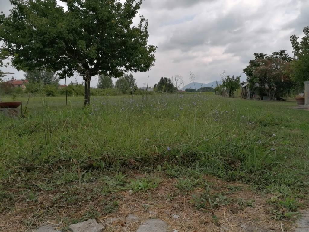 Appartamento in Vendita a San Giuliano Terme Periferia: 4 locali, 90 mq