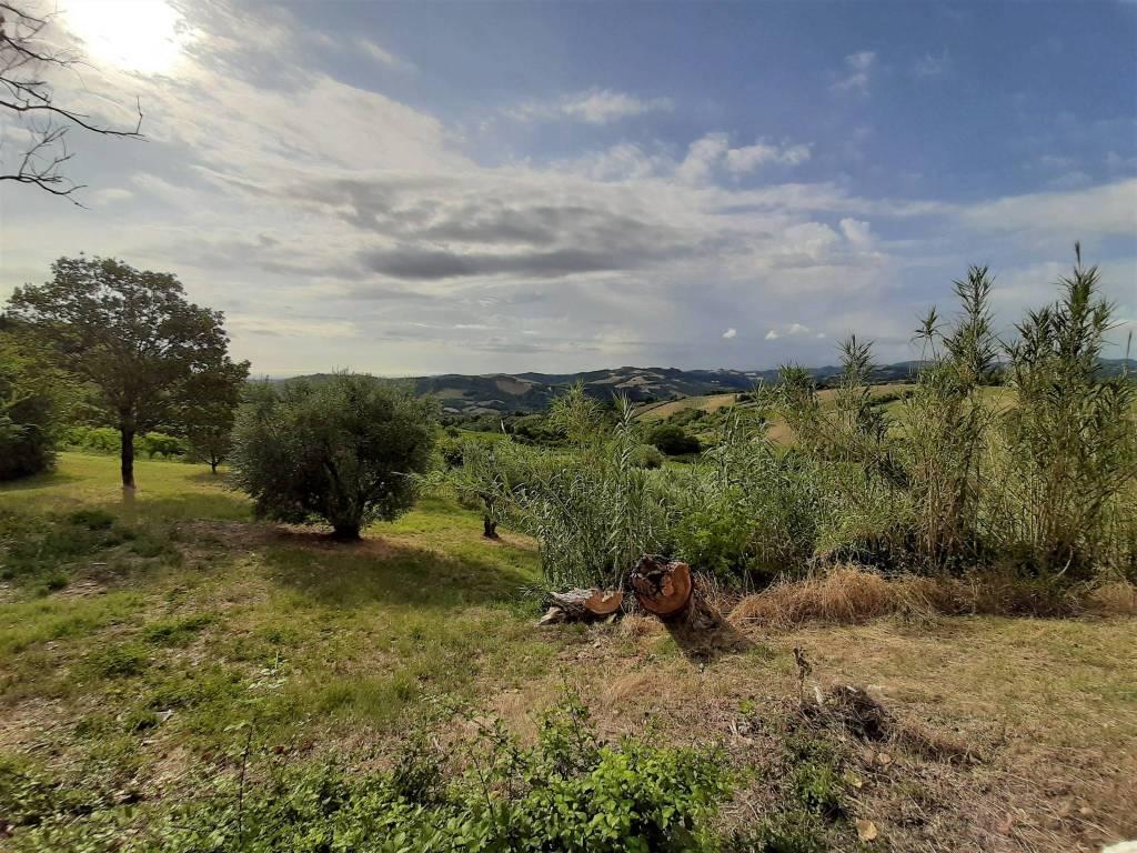 Rustico in Vendita a Castrocaro Terme E Terra Del Sole Periferia: 5 locali, 422 mq
