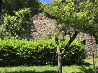 Rustico / Casale da ristrutturare in vendita Rif. 4400376