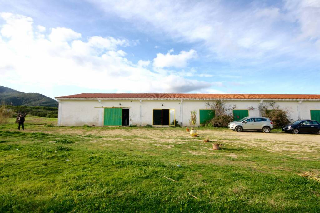 Magazzino - capannone in affitto Rif. 4444320