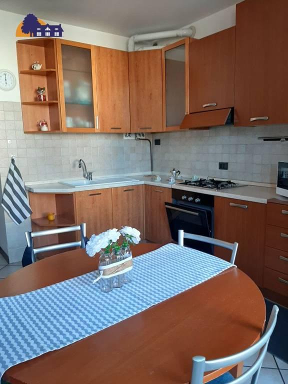 Appartamento in buone condizioni arredato in affitto Rif. 8846772