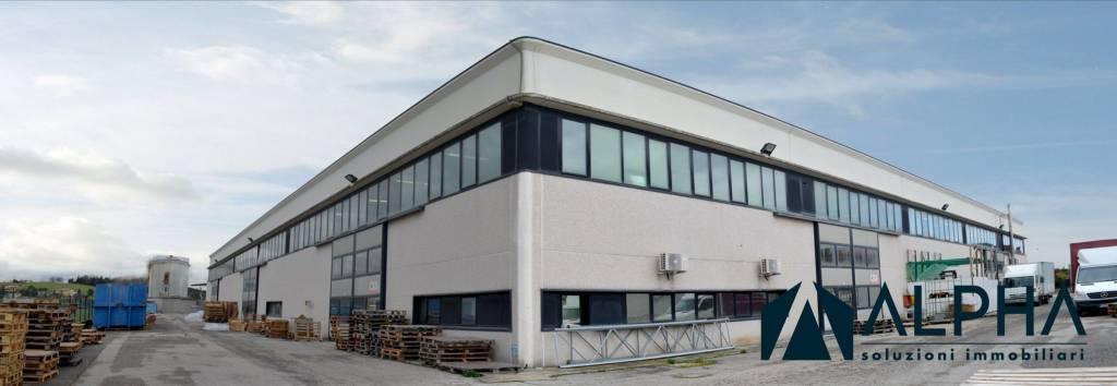 Capannone in vendita a Bertinoro, 5 locali, prezzo € 2.000.000   CambioCasa.it