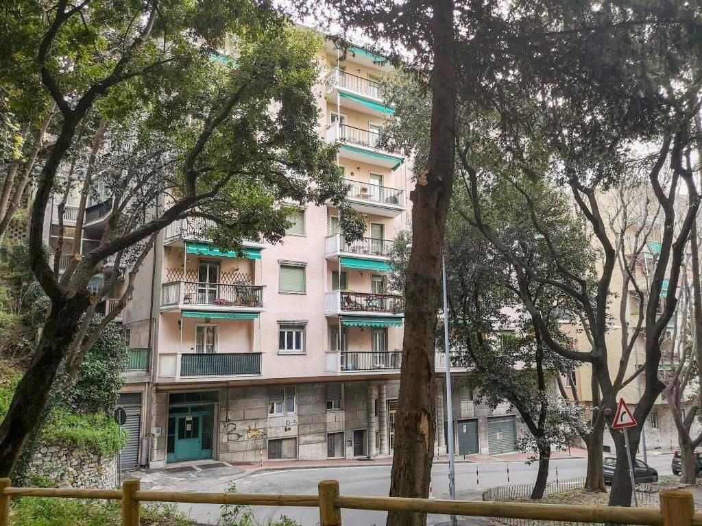 Appartamento in affitto a Genova, 3 locali, zona Foce, Castelletto, Albaro, Carignano, Medio Levante, prezzo € 500 | PortaleAgenzieImmobiliari.it